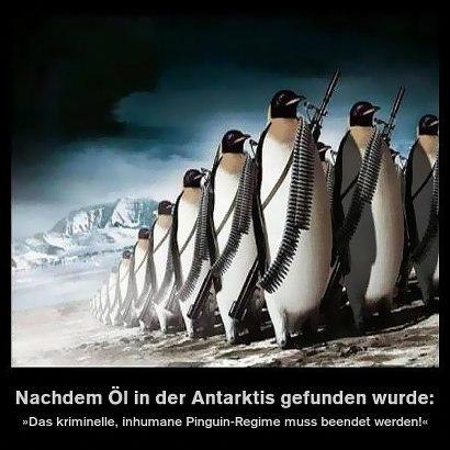 penguins-410