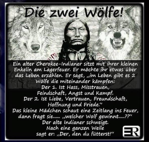 die 2 Wölfe