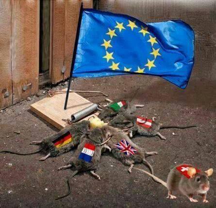 ratten_eu