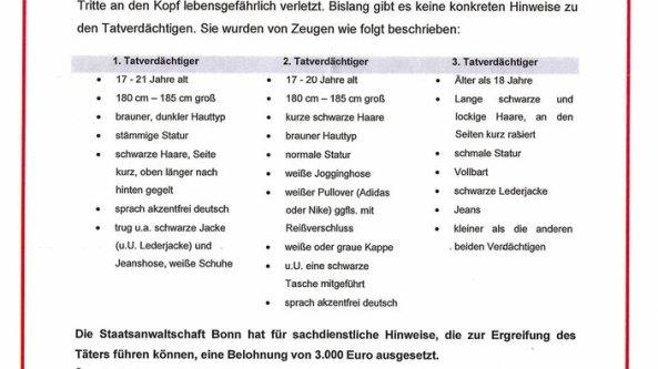 niklas-p-flugblatt-100~_v-gseapremiumxl